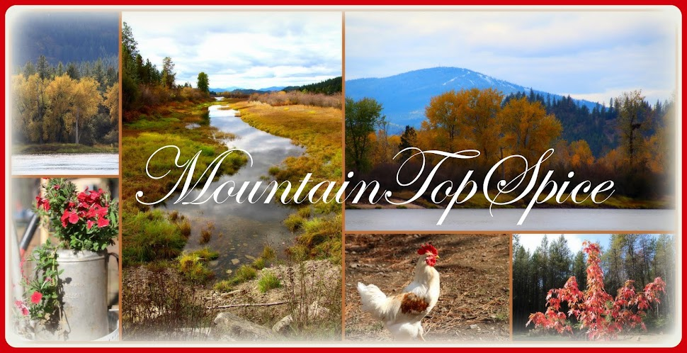Mountain Top Spice