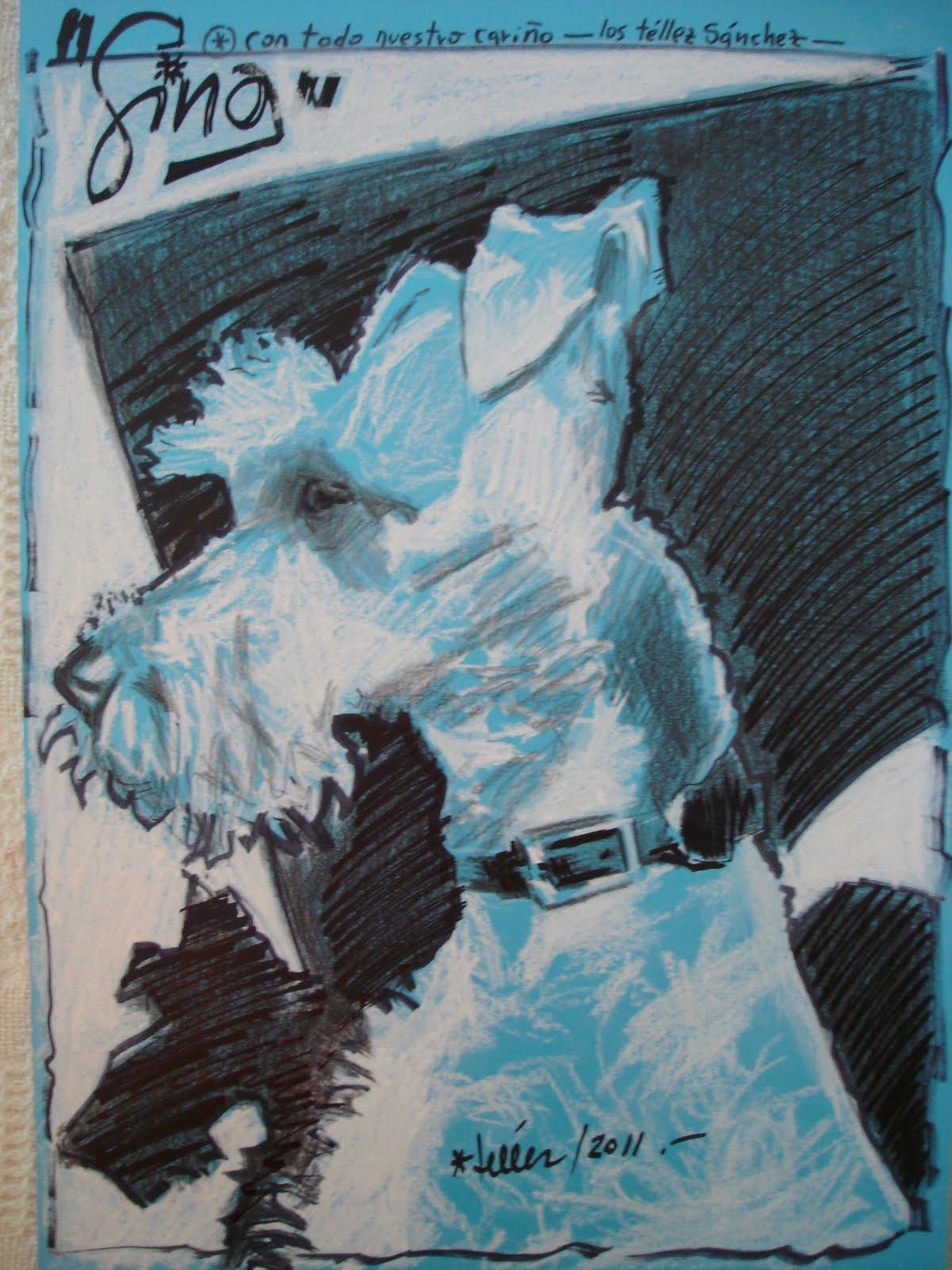 GINA, ágil , despierta, lista...Mi dibujo con tiza blanca, lápiz ...