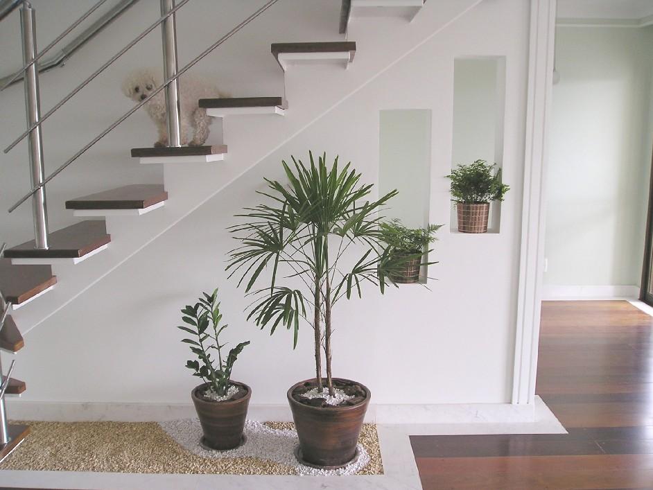escada externa para jardim:Vasos de plantas com pedras sobre o piso! Na parede nicho com vasos de