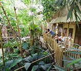 Jungle Lodge - Heijderbos Center Parcs