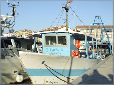 Grado - Friuli Venezia Giulia - peschereccio al porto