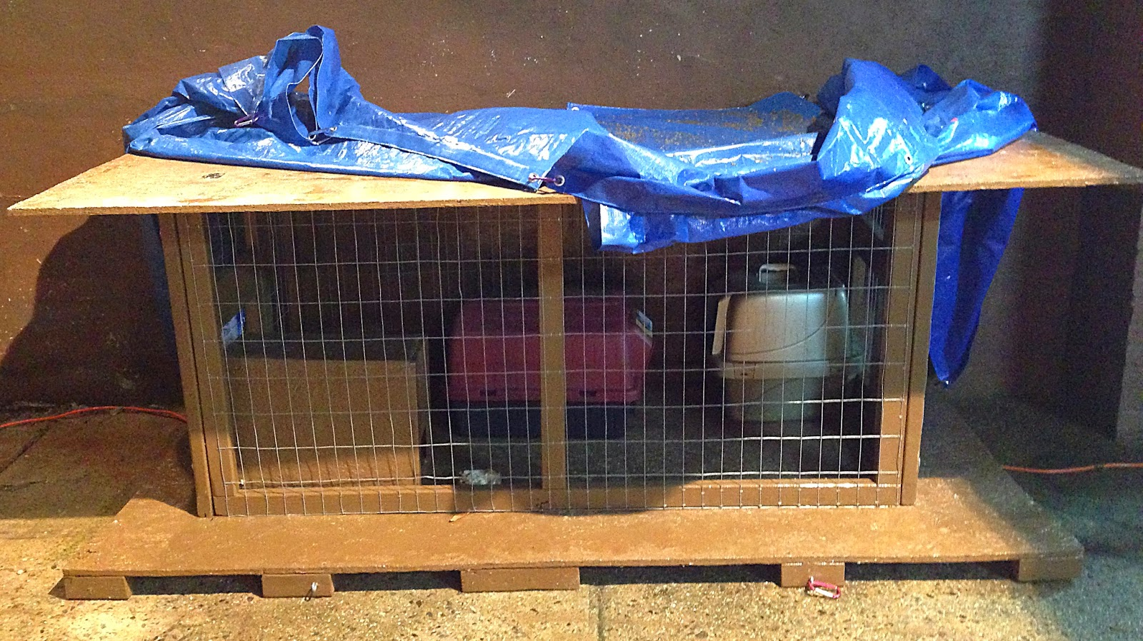 Cat Sleeping In Litter Box After Move