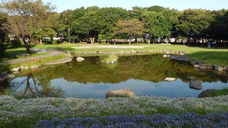 Beppu International Plaza: Beppu park