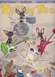 Cover of Rolling Bone