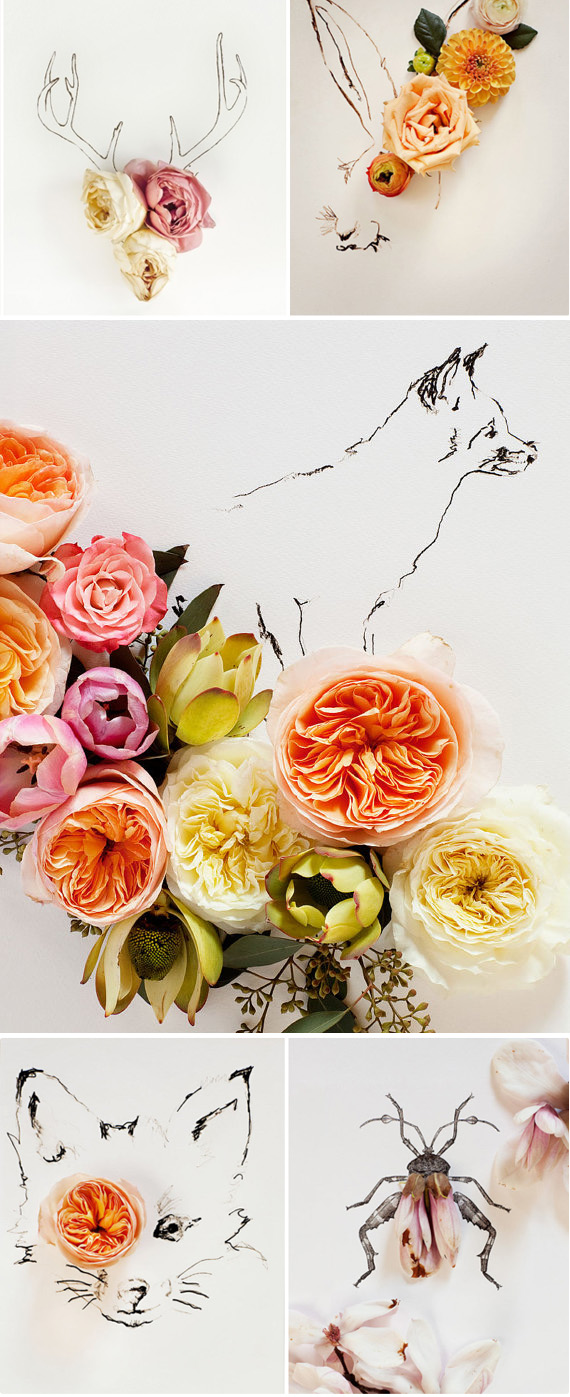 Floral and Sketch Prints by Kari Herer photography