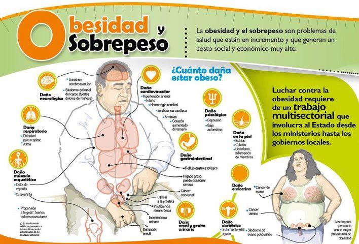 comidas q causan acido urico significado de acido urico diccionario alimentos prohibidos en acido urico elevado