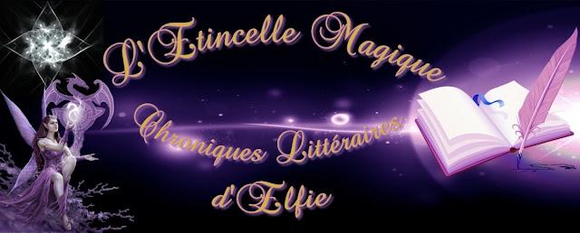 http://eneltismae.blogspot.com/2015/07/chronique-t2-par-letincelle-magique.html