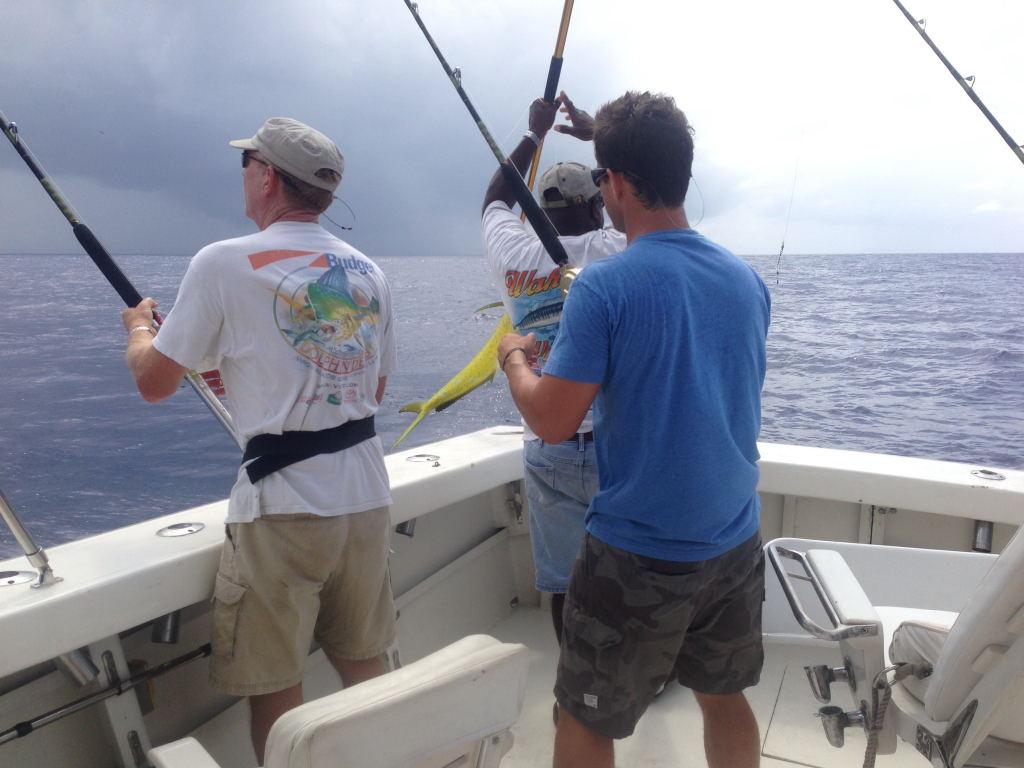 Fishing season in us virgin island