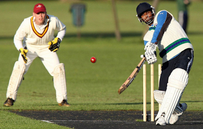 EA Cricket 16 Free Download Full Version