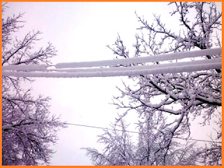 Three snow covered power lines.  Snow thickness of about 3 inches.