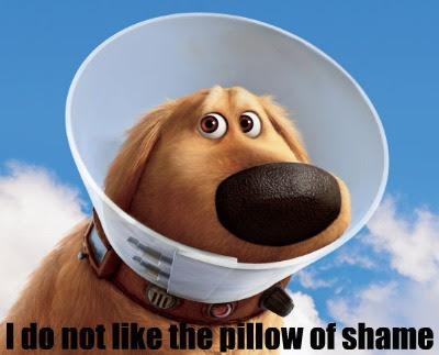 Pillow of Shame #1