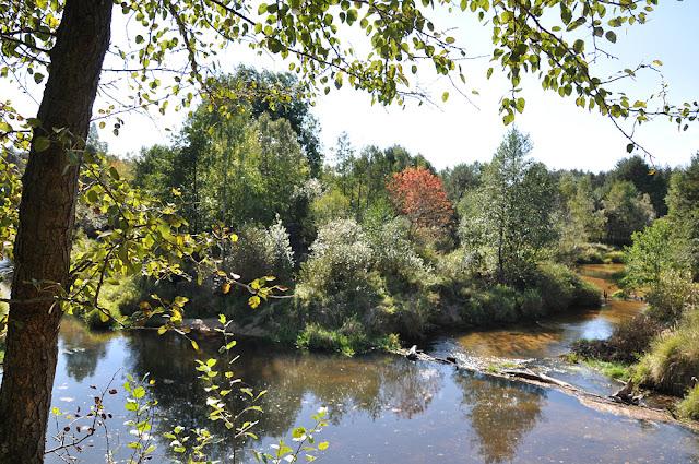 Małachów, rzeka Czarna, okolice nieistniejącego młyna, stawów i ślady mostku. Fot KW