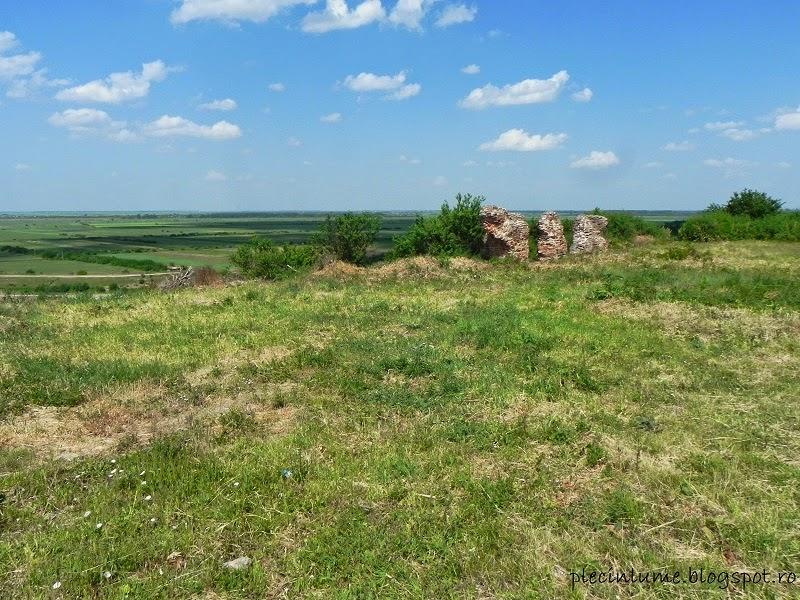 Ruinele Palatului lui Constantin Cantacuzino din Mironesti