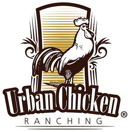 Urban Chicken