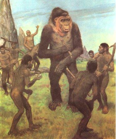 Gigantopithecus blacki y Homo erectus
