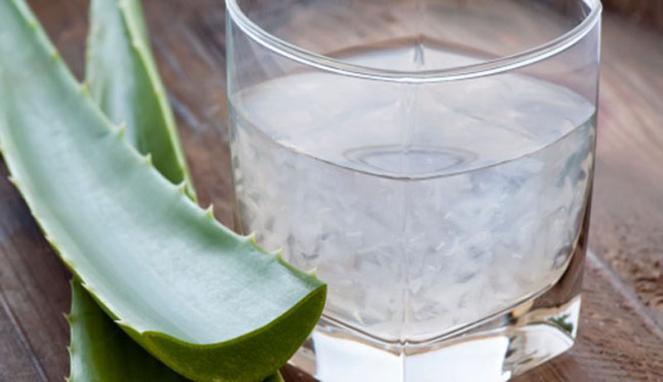 Cara Membuat Es Lidah Buaya Minuman Khas Kalimantan