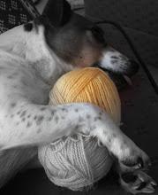 Strikkehjemmets hund - Pippi
