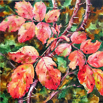 Alberta Rose - Autumn Foliage #1