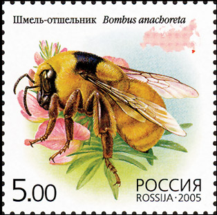 bumblebee stamp russia
