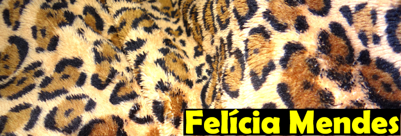 Felícia Blog