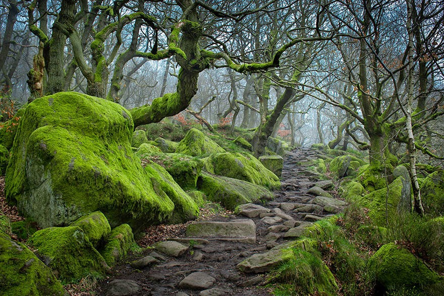 Padley Gorge, Peak District, UK