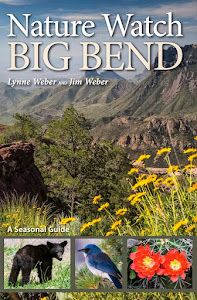 Nature Watch Big Bend