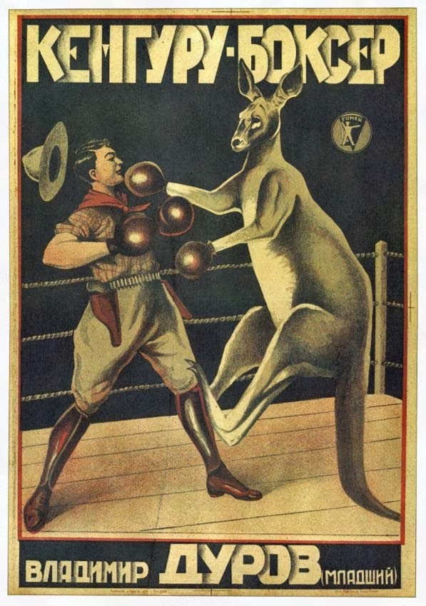 The Mystery Of Friends Boxing Kangaroo Poster