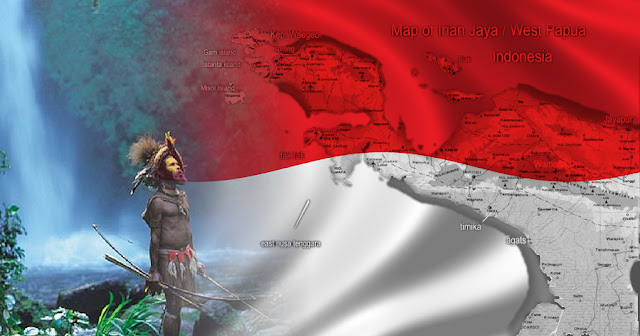50 Tahun Bergabung ke NKRI, Papua Layak Diberi Kado Politik