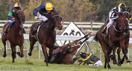 Trudy Thornton came off Apache Firework on the final straight of Race 8, Winning Edge Presentations Hawke's Bay Gold Cup $75,000, 2200m. The eventual winner was No 6, Alysha Collett on Classcoroc. Hawke's Bay Gold Cup Race Day at Hastings Racecourse, Hastings. photograph