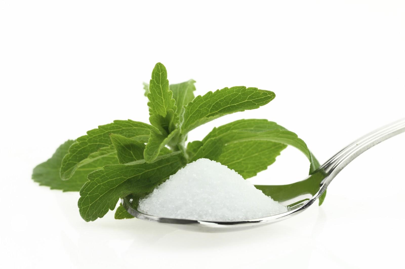 stevia-recetas-bruja
