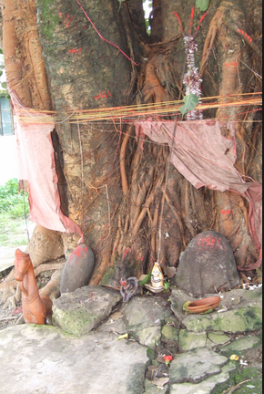 Budh Grah ke Dushprabhaav ka Totka