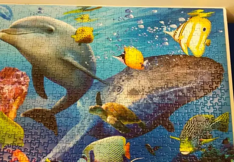 Ravensburger Underwater 2000 piece jigsaw puzzle close-up 2