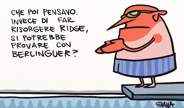 Gava gavavenezia vignette satira illustrazione caricatura illustrazioni fumetto berlinguer ridge piscina sole scottatura risorto
