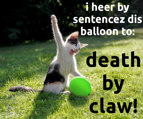 Cat MEME kitten killing the balloon