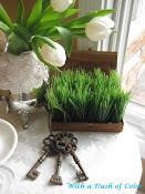 Spring Vignette