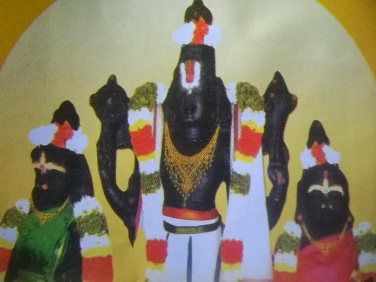 Image result for பெருமாள் அவதாரம்