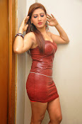 Actress Rishika Sizzling Photo shoot Gallery-thumbnail-12