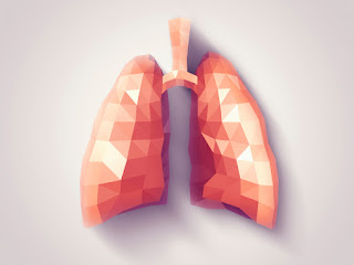 Healthy Lungs Digital Image