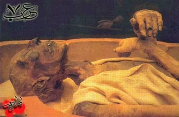 Pharaoh Mummy