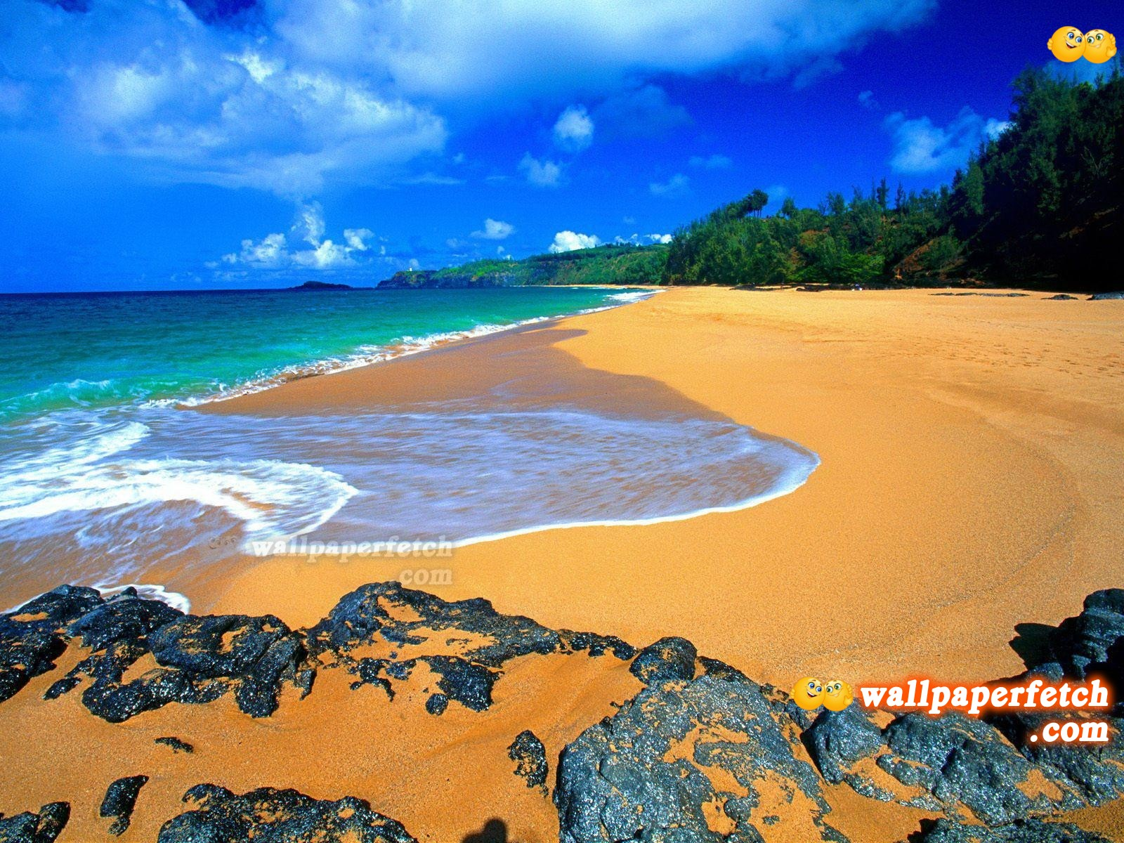 http://1.bp.blogspot.com/-JLEiuIxtdEo/T6QIhz13pVI/AAAAAAAALHM/wnpPLupQJfw/s1600/Beautiful_Hawaii_Beach_Wallpaper_1600x1200_wallpaperhere.jpg