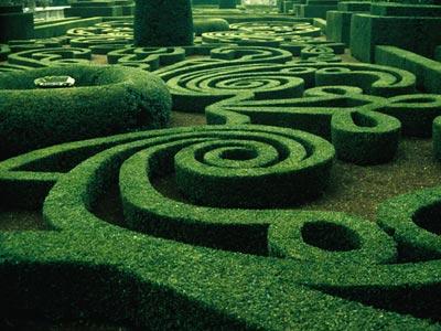 il piccolo giardino di l.: ode al bosso - Piccolo Giardino Allitaliana