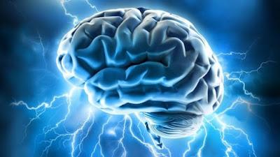 Fakta mengagumkan tentang Otak, Apa yang Anda tidak tahu tentang otak Anda