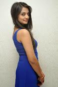 Nikitha Narayan glam pics in blue-thumbnail-14