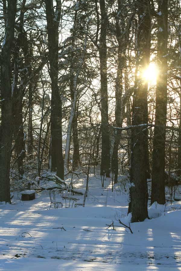 http://1.bp.blogspot.com/-JM8ftK3xKPs/VNJyZ_vbzkI/AAAAAAAAkZA/cjEa-YipZlM/s1600/winter%2B2015.jpg