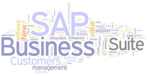 Sap Business Suite Sap Business Suite is a Bundle
