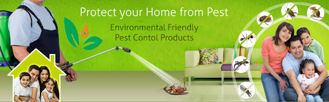 Mourier Pest Control