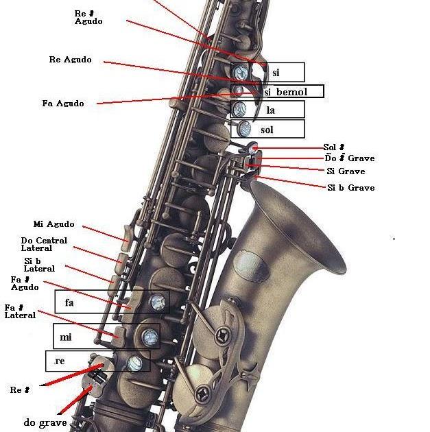 Videos de saxo gratis have harmonious