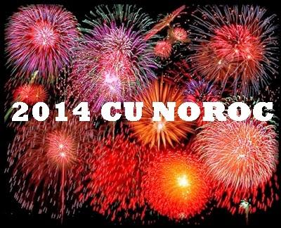 2014-norocos