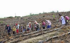 Mengenal Suku Buol dan Kebudayaannya Asal Sulawesi Tengah