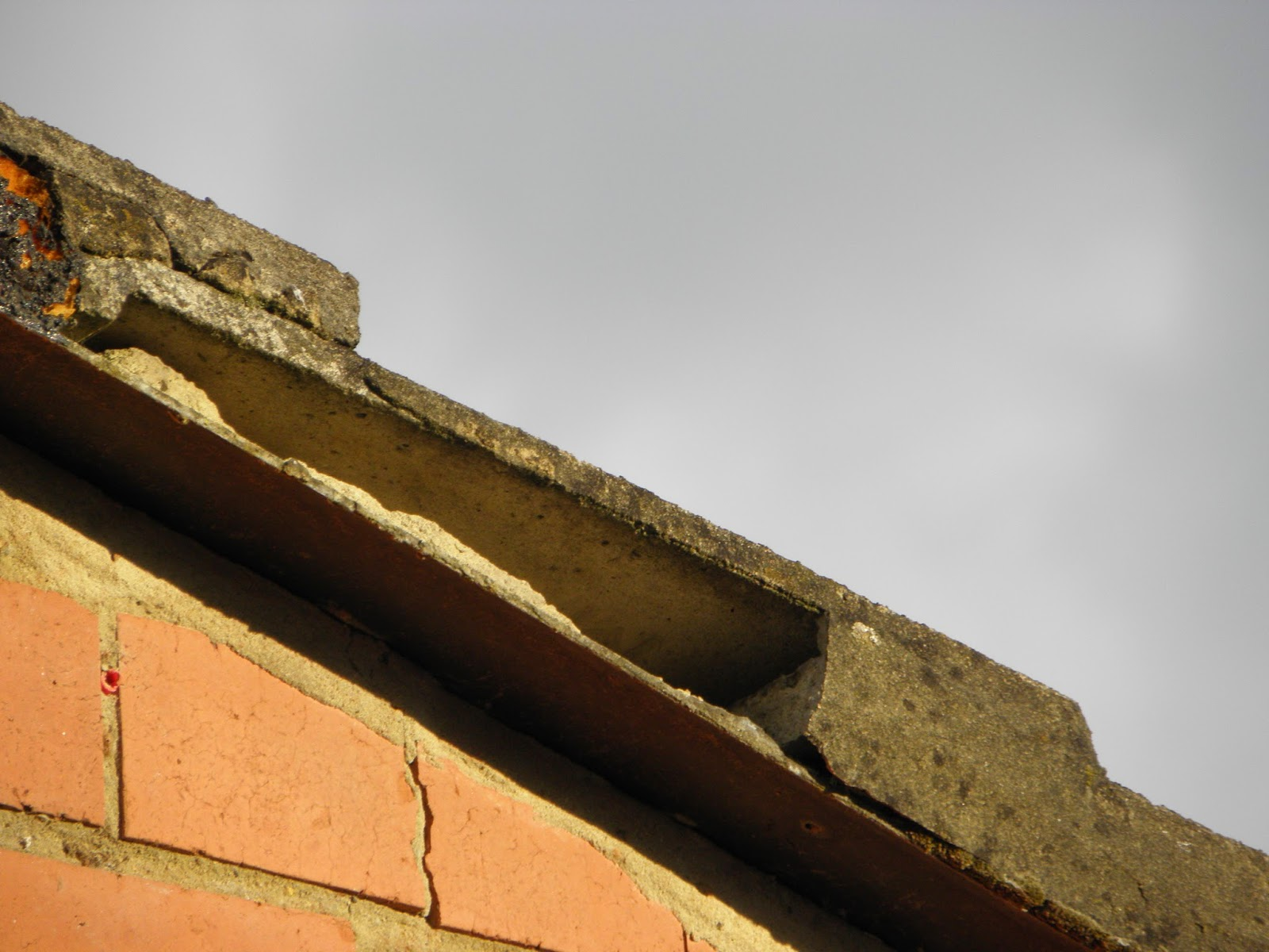 Where Eagles Fear To Perch Fitting A Roof Dry Verge